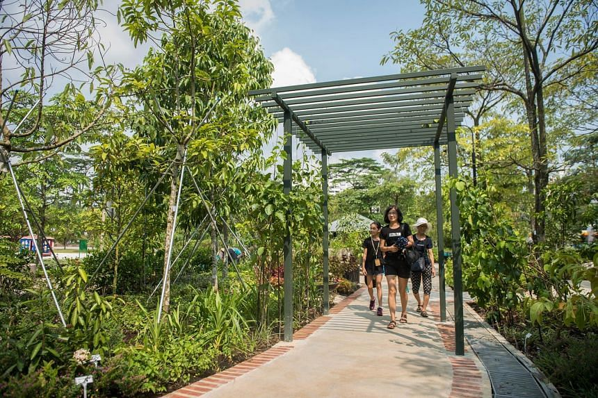 The Therapeutic Garden at Choa Chu Kang Park, which was opened yesterday, aims to make it easier for people to interact with nature and help improve the mental well-being of visitors of all ages, especially seniors.