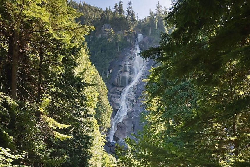 Authorities recovered the bodies of three people who fell about 30m on July 3 while swimming in a pool at the top of Shannon Falls, about 56km north of Vancouver, British Columbia.