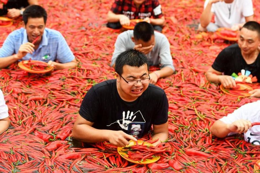 With doctors on hand just in case, ten contestants each held plates heaped with 50 Tabasco chili peppers, racing to be the first to finish off the red-hot fruits.