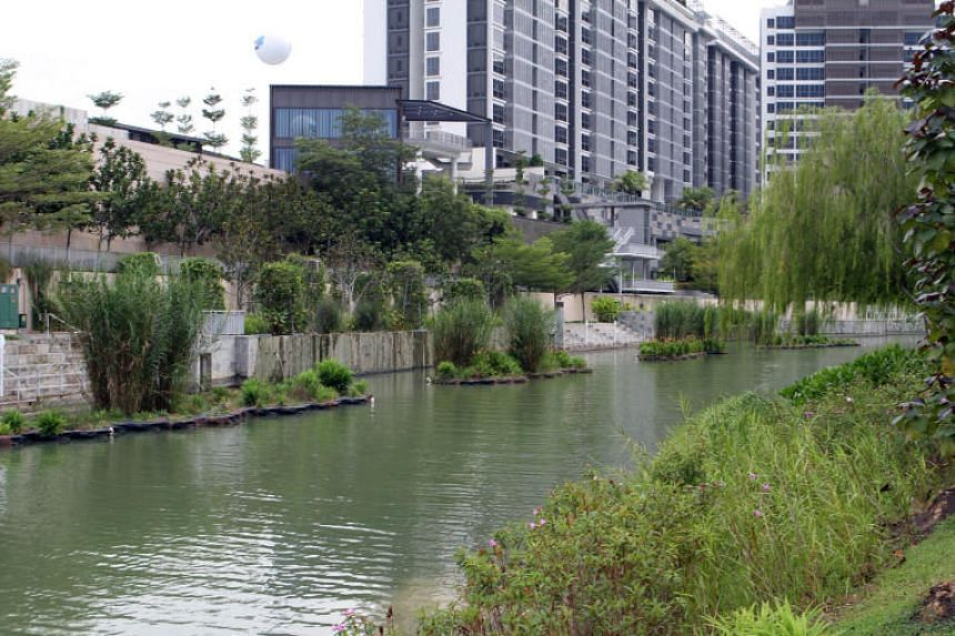 The Biophilic Town Framework, introduced in 2013, goes beyond just providing greenery for residents. HDB announced the updated framework on July 18 at the International Federation of Landscape Architects World Congress held at Marina Bay Sands.