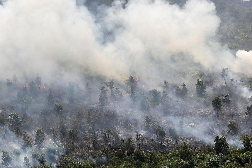 Indonesia has been hit by forest fires again. This blaze in Ogan Komering Ilir, in South Sumatra province, was still raging on Tuesday. The Indonesian government has also detected 29 hot spots in Riau province on Sumatra Island in the past two days.