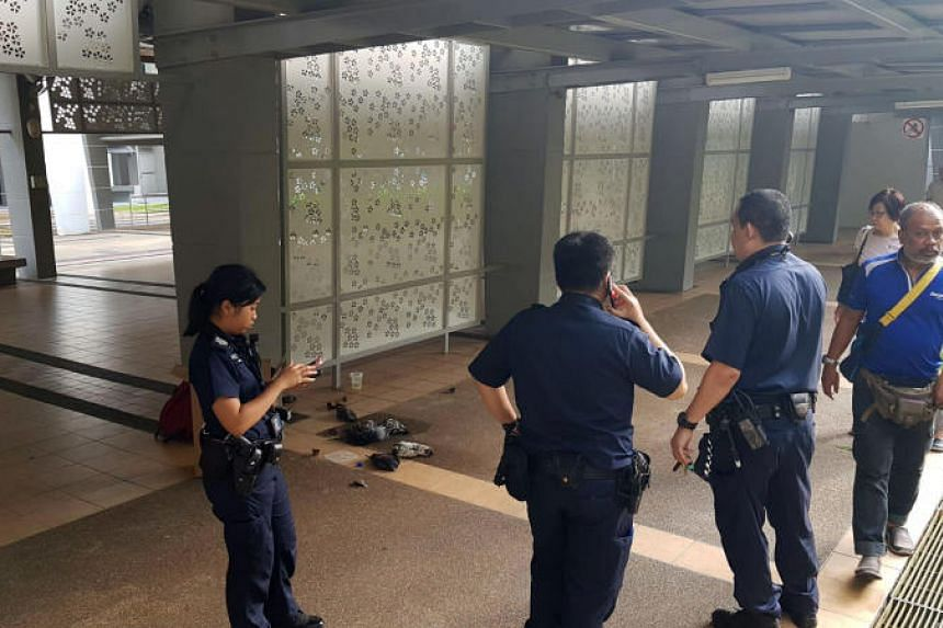 Pigeons and other species of birds were found dead at the void deck of Block 390, Bukit Batok West Avenue 5 on July 19, 2018.