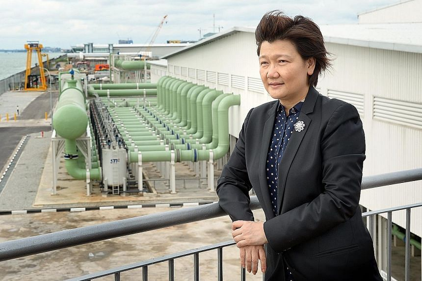 Hyflux chief executive Olivia Lum (above) said that while management has yet to receive any firm offer for the Tuaspring integrated water and power plant (top), there are now eight interested parties.