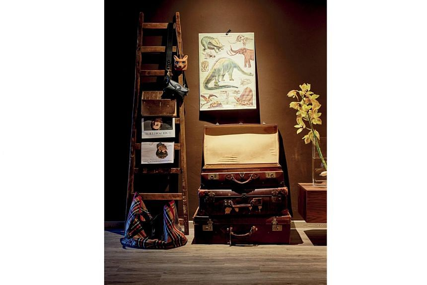 (Above) Quaint ornaments and mementos dot the living area of Mr Desmond Lim's warm and cosy apartment. (Left) Leather cases and a ladder doubling as a display stand are set against the brown wall, giving this space an earthy, adventurous vibe. (Above
