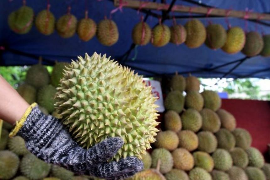 Electoral watchdog Bersih 2.0 says handing out durians to voters reeks of corruption, as this is tantamount to an offence under Section 8 of the Election Offences Act for seeking to influence voting behaviour.