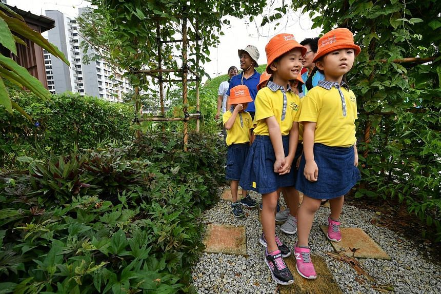 Above: Alyssa Ng Si Qi (front, left) and Li Run Tong, both six, at the KidzPatch garden adjacent to the Skool4Kidz campus. Top: Overview of the Skool4Kidz campus beside the Sengkang River. It is one of the nine large childcare centres already operati