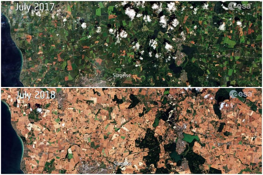 The European Space Agency released images from the Sentinel-2 satellite comparing a region in Denmark in July 2017 with the same spot this month.
