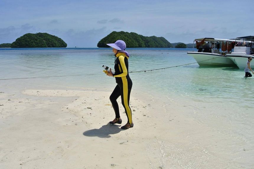 Chinese tourists accounted for 47 per cent of international visitors to Palau in 2016, with Taiwanese making up 10 per cent.