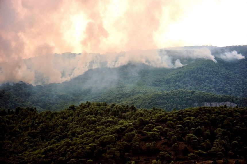 Smoke rises during a wildfire at the village of Kineta, near Athens, on July 25, 2018.
