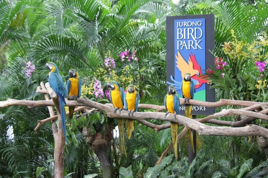 The logo of Jurong Bird Park, as seen here at the aviary's entrance.