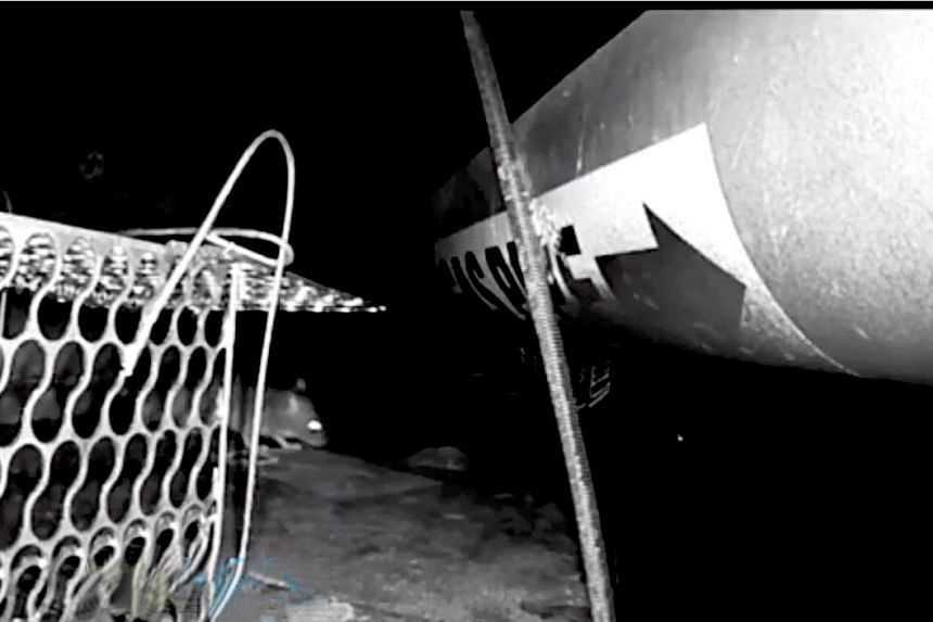 Caught red-handed - screenshots from footage showing a rat cleverly avoiding a trap while stealing the bait.