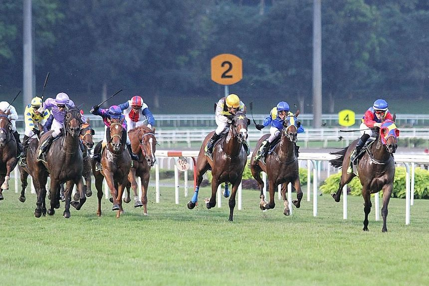 Grand Knight (nearest left, with jockey Ryan Curatolo astride) making it at his sixth attempt in Race 2 at Kranji last night.