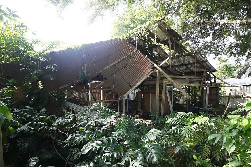 House 63C, near Pulau Ubin's jetty, is among the houses that will be restored.