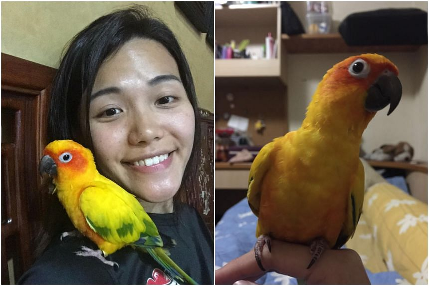 Ms Yu Mei Ling, 26, with Lucky.