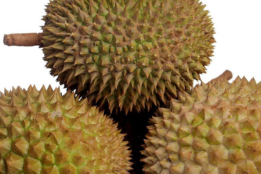 The shop in Vietnam's Saigon receives about 500kg of durians daily from Dak Lak, Lam Dong and Dak Nong Provinces, which are sold out in one afternoon.