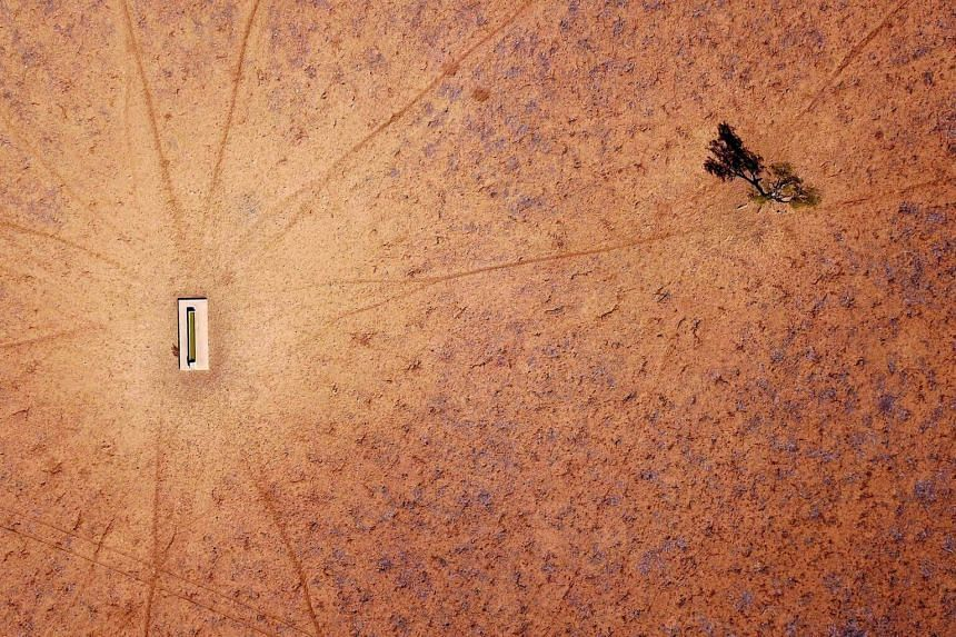 A lone tree stands near a water trough in a drought-effected paddock in Walgett, New South Wales, Australia, on July 20, 2018.