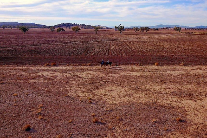 A farmer and his daughter ride their horses next to a fence that adjoins a drought-effected paddock in Gunnedah, New South Wales, Australia, on July 21, 2018.