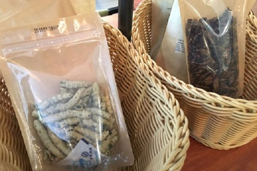 Packaged silkworms (left) and crickets.