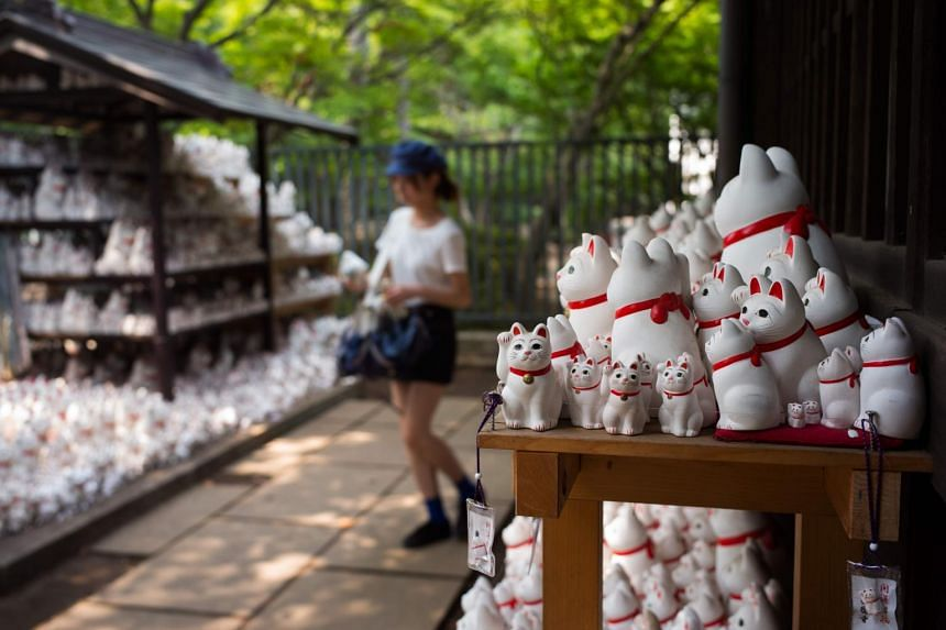 A woman looking at cat figurines called maneki-neko at the Gotokuji temple in Tokyo, on Aug 6, 2018.