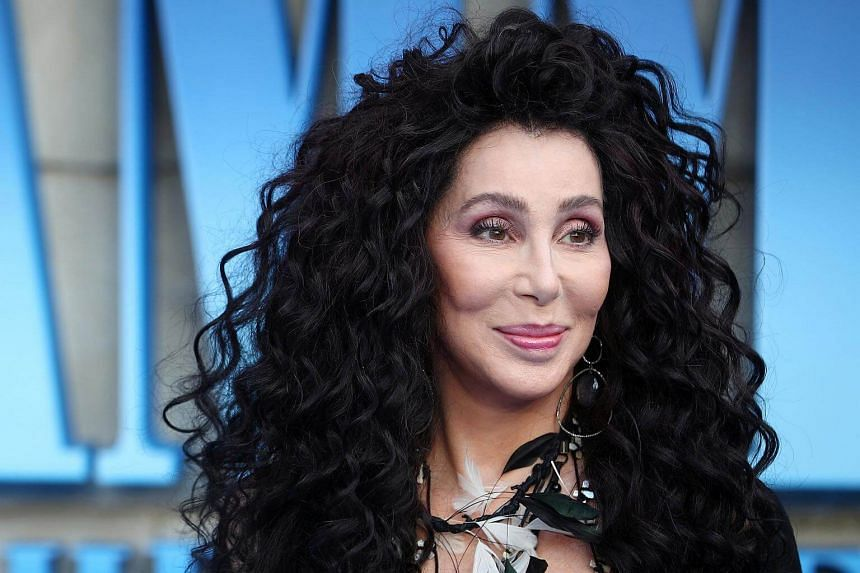 Cher (pictured) makes a late entrance in the movie playing Ruby, the troublesome mother of Donna, who was brought to life by Meryl Streep in the first movie, Mamma Mia! (2008).