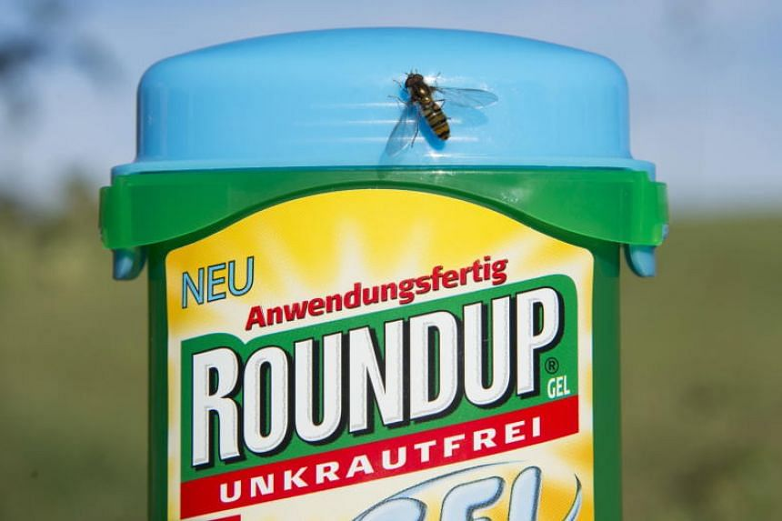The herbicide Roundup, manufactured by the Monsanto company, pictured in a garden in Hoechenschwand, Germany, on 18 Oct 2017.