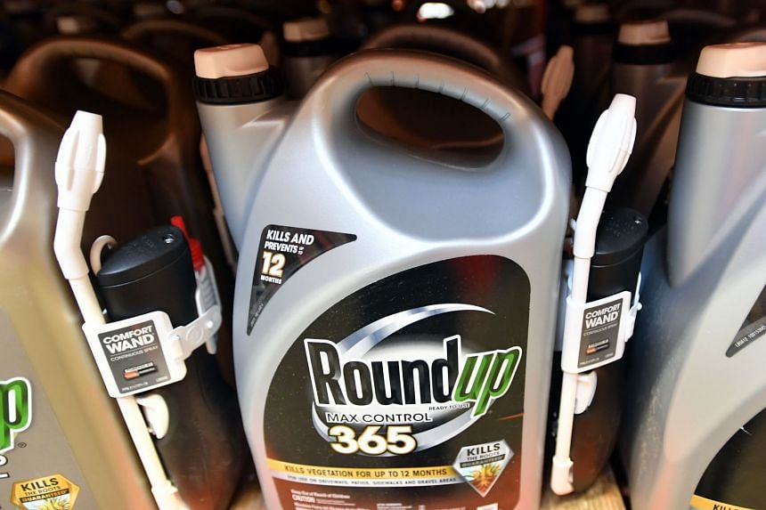 Monsanto has been found liable in a lawsuit for causing cancer through its glyphosate-based weed-killers, including Roundup.