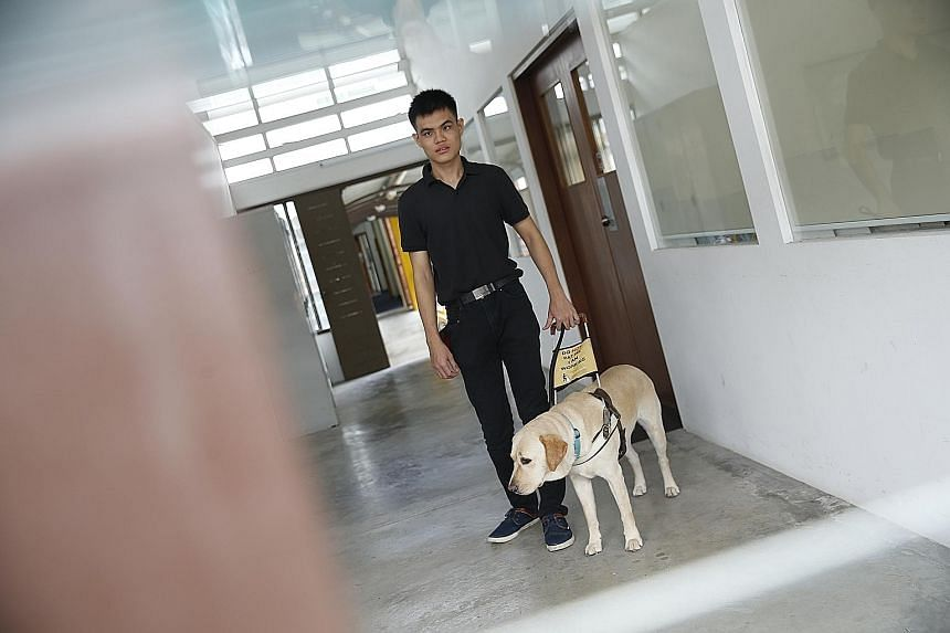 Mr Chia Hong Sen with his guide dog, Clare. The 22-year-old SIM undergrad teaches other people with visual impairment how to use technology to aid them in their daily lives.