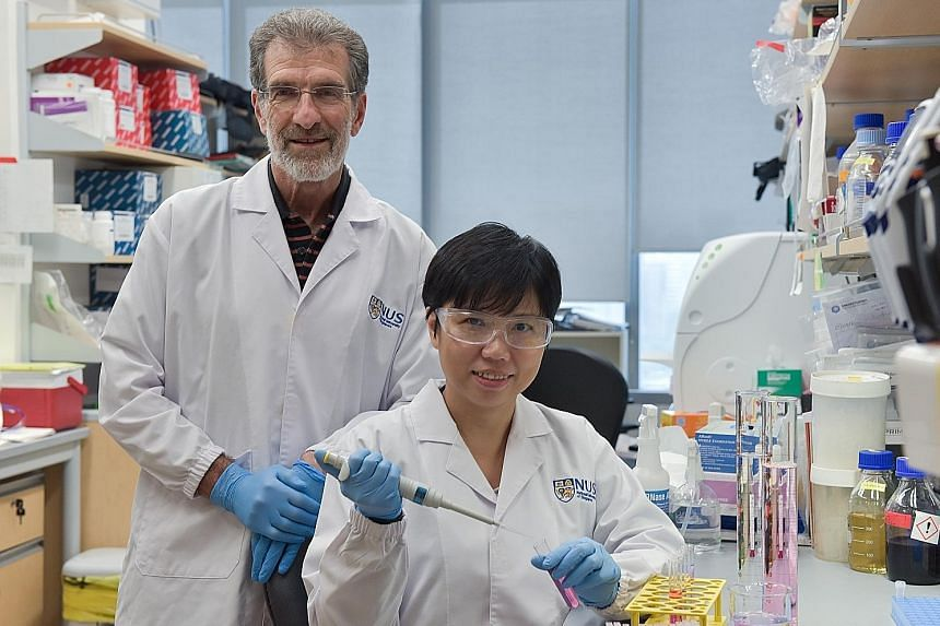 Professor Daniel Tenen and Dr Liu Bee Hui of the Cancer Science Institute of Singapore have designed a molecule to block the interaction between two proteins linked to cancer growth.