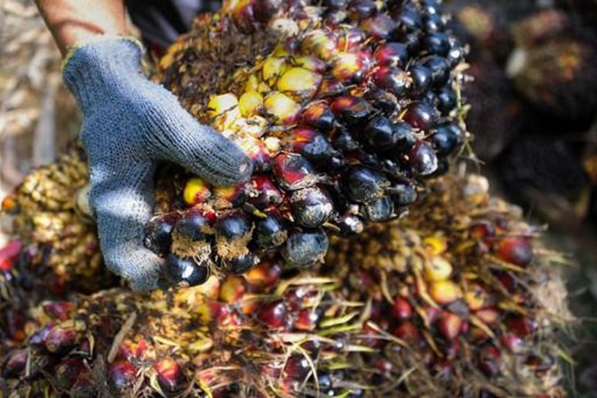 Cofco will be working together with Sime Darby in a joint venture to set up plants in Malaysia to produce palm oil-based products for the Chinese market.