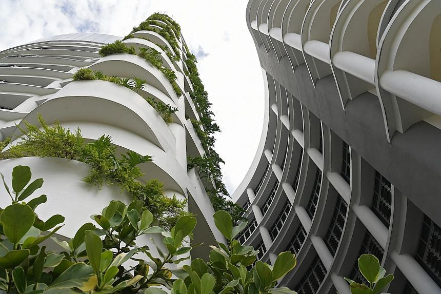 Besides sun shades and external shading devices, green roof vegetation next to windows on multiple floors of Jurong Community Hospital provides additional shade, helping to cool the ambient temperature inside the buildings. A spokesman for Ng Teng Fo