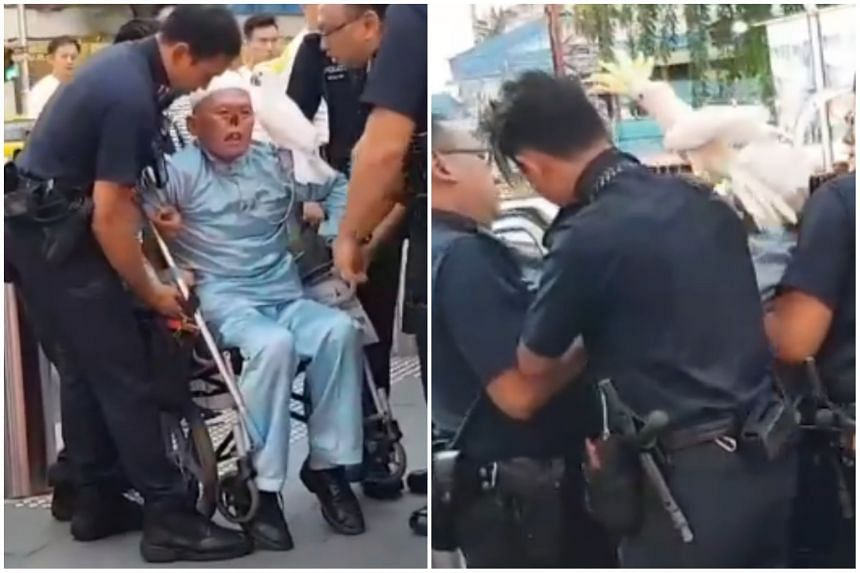 A video of the arrest in Orchard Road shows police officers trying to lift Mr Zeng Guoyuan out of a wheelchair while he clings on to its hand rests. Mr Zeng's pet parrot, which earned him his nickname, perches itself on one of the officer's shoulders
