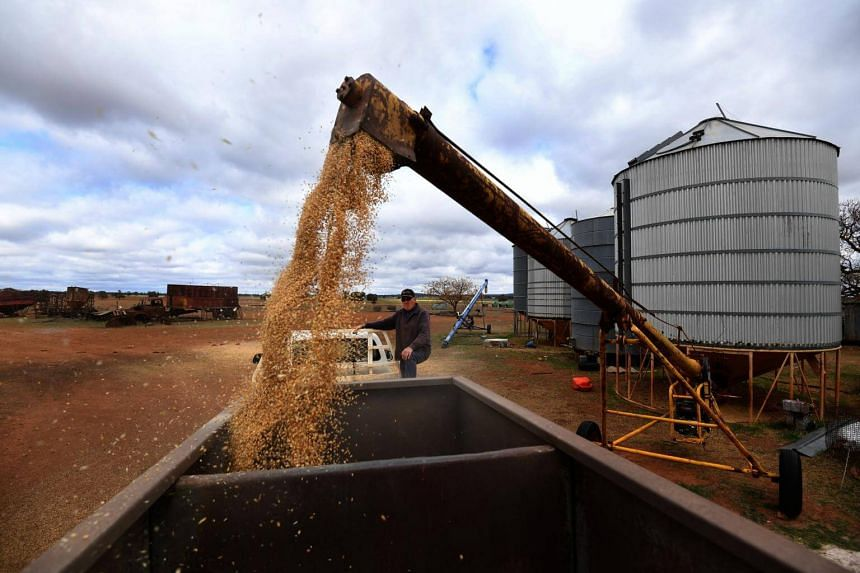 Crop and livestock farmer Wayne Dunford loads a feeder with grain feed for sheep at Lynton Station near Parkes, New South Wales, on Aug 13, 2018.
