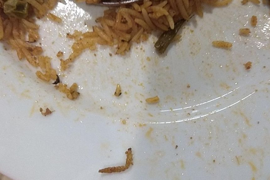 The caterpillar in the vegetable biryani that Mr Abeed Mohammad ordered at Ikea's outlet in India.
