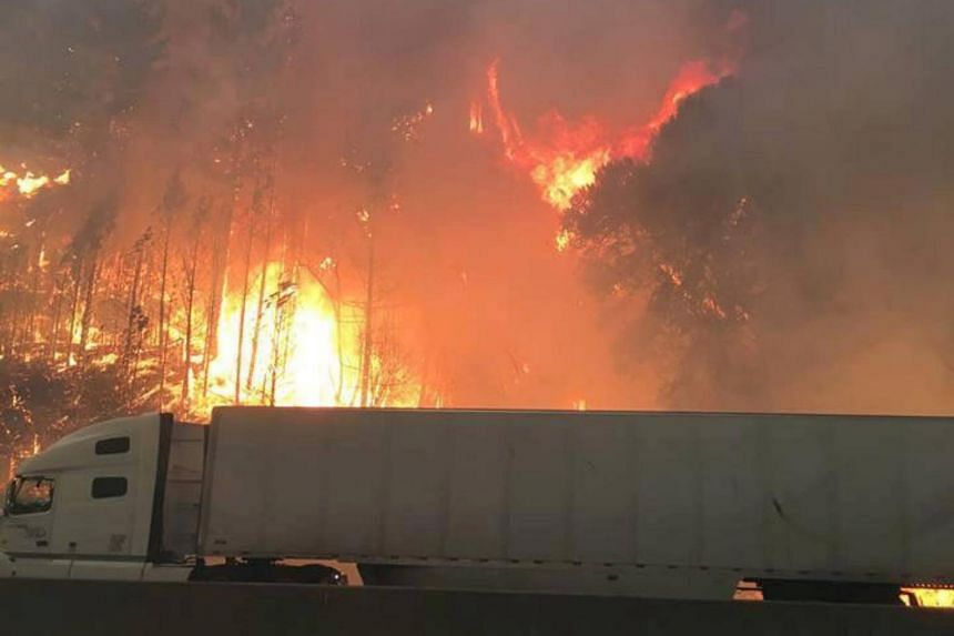 Flames engulfing trees in the Shasta-Trinity National Forest as a tractor trailer drives by north of Redding, California, on Sept 5, 2018.