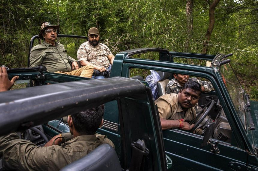 Forest rangers in a tiger reserve in the Indian state of Maharashtra exchange information about tiger sightings, on Sept 6, 2018.
