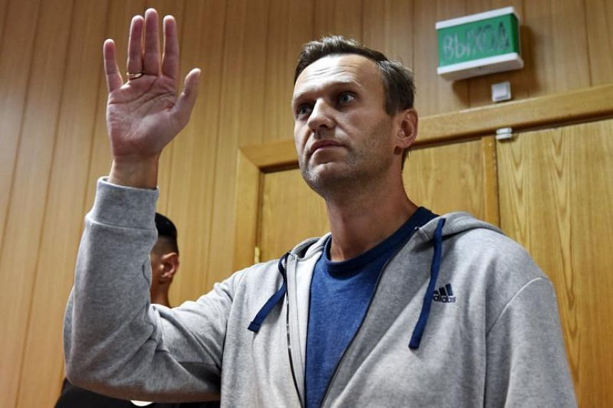 Opposition leader Alexei Navalny had planned to lead the protest in Moscow on Sunday, but was convicted of breaking protest laws last month and jailed for 30 days.