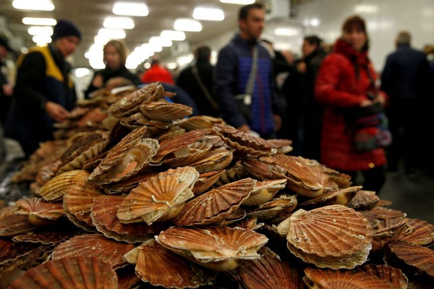 Scallops on a market stall during an annual celebration of scallops in Port-en-Bessin, France.
