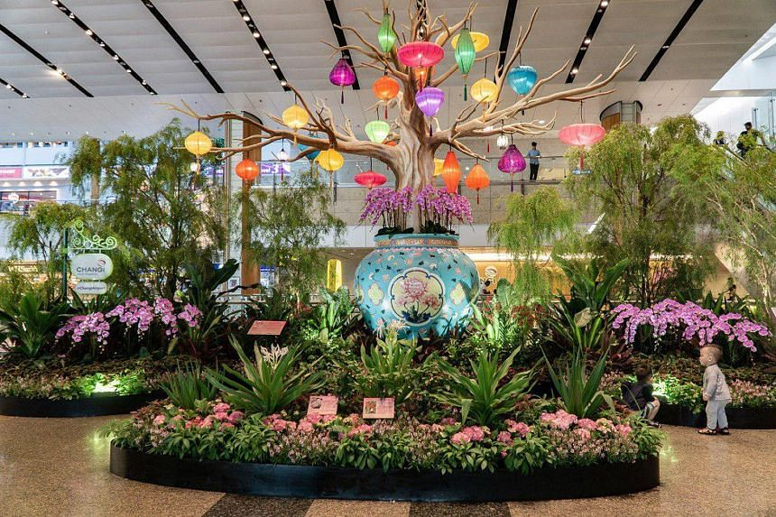 Changi Airport: One of the six displays across its four terminals. Chinatown: A dragon-dance performance by the Nam Sieng Dragon & Lion Dance Activity Centre (above) at the light-up and opening ceremony of this year's Mid-Autumn Festival last Saturda