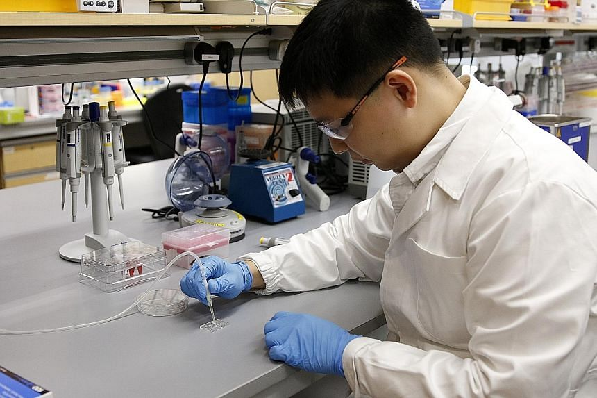 Researcher Nicholas Ho of NUS' Biomedical Institute for Global Health Research and Technology and A*Star's Institute of Molecular and Cell Biology with the enVision screening kit. For the test (right), a drop of the user's tissue or bodily fluid samp