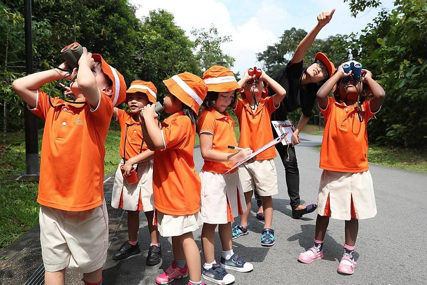Pre-schoolers from My First Skool learn to spot birds and record what they see at Zhenghua Nature Park.