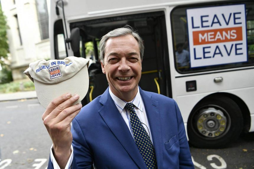 Britain's anti-European Union UK Independence Party has undergone two years of inner turmoil to find a leader to replace the talismanic Nigel Farage (above).