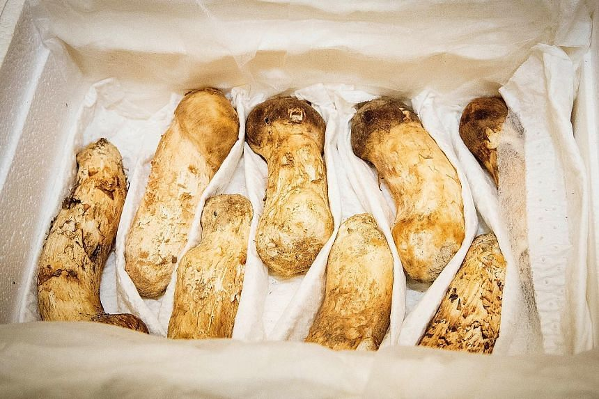 Two tonnes of pine mushrooms from North Korean leader Kim Jong Un will be given to 4,000 South Koreans who have been separated from their families in the North since the Korean War.