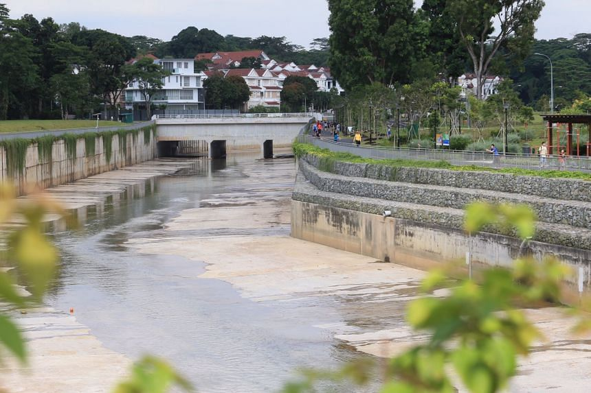 The gardens are designed to cleanse rainwater runoff in the area and improve the quality of water flowing into the canal.