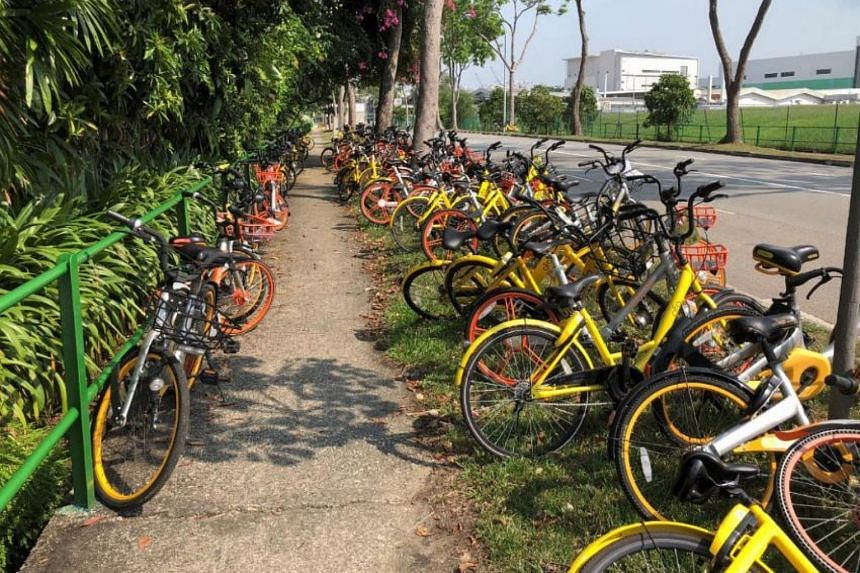Bicycles parked haphazardly in Loyang Crescent.