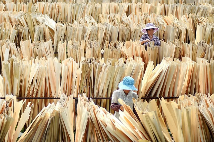 Workers inspect wood sheets drying under the sun at a company processing timber in Zibo, Shandong province. A broad swathe of products is on the hit list for the latest round of US tariffs on Chinese imports, such as Chinese-made voice data receivers