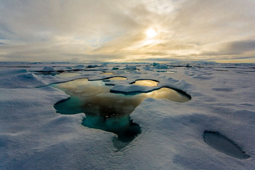 Melting ice has paved the way for vessels to sail via the Arctic route.