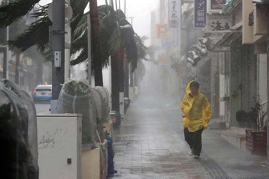 Above: A passer-by braving heavy rain and wind caused by Typhoon Trami in Japan's Okinawa yesterday. Left: A tree uprooted due to strong winds generated by Typhoon Trami in Okinawa.