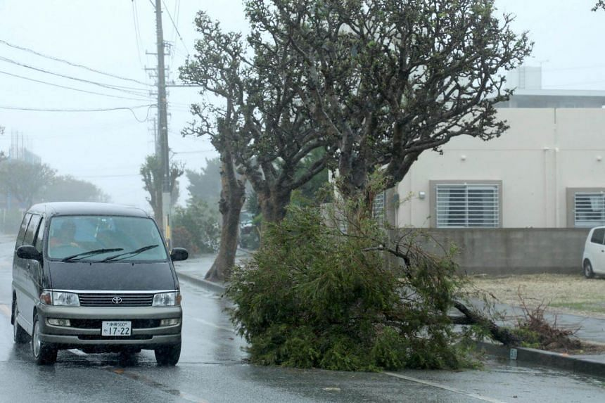 A car passes a tree uprooted due to strong winds generated by typhoon Trami in Itoman, on the southern island of Okinawa, on Sept 29, 2018.