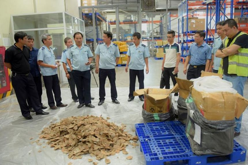 The authorities at Hanoi's airport found 805kg of pangolin scales as well as 193kg of ivory and ivory-derived products in two dozen cargo boxes on Sept 28, 2018.