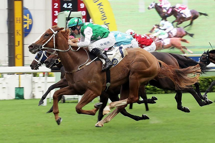 Pakistan Friend relishes the mile and will be flying home in Race 6 at Sha Tin tomorrow if the speed is on.